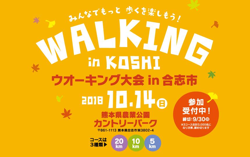 2018koushiwalking